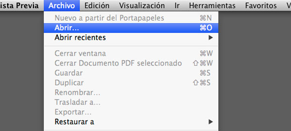 abrir-pdf-vista-previa